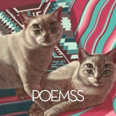 #Poemss – Poemss