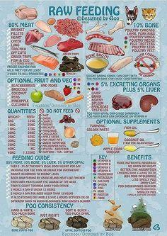 Raw Food diet-crop-r.jpg (636×900)