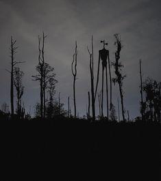 - Sirenhead (fanart by me) – radical horror , storie , weird , diys , pictures Scary Photos, Creepy Images, Creepy Pictures, Arte Horror, Horror Art, Creepy Horror, Arte Obscura, Creepy Art, Dark Photography