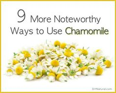 9 Remarkable Uses for Chamomile You Need to Try