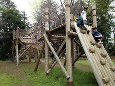 Image result for natural tree kids playpark