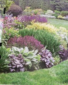 . Front Yard Garden Design, Front Yard Landscaping, Beach Gardens, Outdoor Gardens, Steep Gardens, Plants Under Trees, Garden Drawing, Garden Borders, Garden Photos