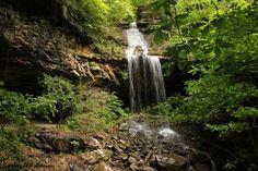 Deer Trail Falls -- Big Piney Creek Wilderness Area - via ExploringNWArkansas.com