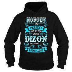 DIZON Nobody is Perfect but if you are DIZON youre Pretty Damn Close