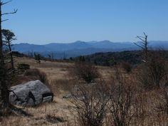 Appalachian Trail (Elk Garden to Mount Rogers, Virginia)