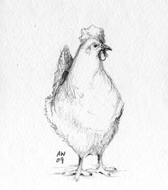 Resultado de imagen para pencil drawings of roosters Animal Sketches, Animal Drawings, Drawing Sketches, Pencil Drawings, Art Drawings, Drawing Ideas, Sketching, Chicken Drawing, Chicken Art