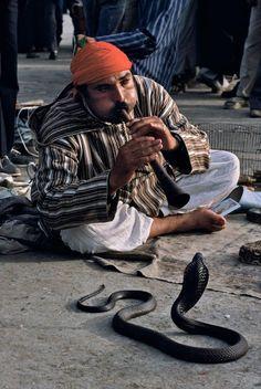 Snake charmer - Marrakesh, Morocco