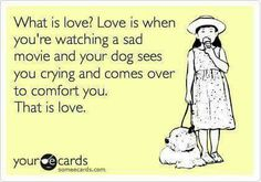 What is love? Love is when you're watching a sad movie & your dog sees you crying & comes over to comfort you. That is love.