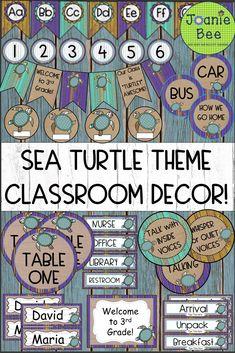 Sea Turtle Classroom