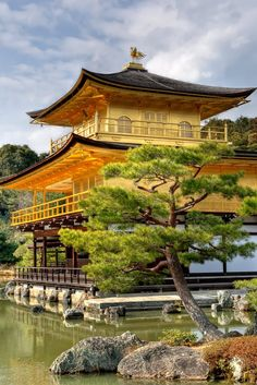 Kinkaku Ji (The Golden Pavillion), Kyoto, Japan by Dimitris Gikas