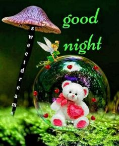 Good Night Pictures, Images, Photos - Page 5 Good Night Flowers, Good Night Beautiful, Good Morning Images Flowers, Cute Good Night, Good Night Gif, Sweet Night, Good Night Sweet Dreams, Good Night Quotes, Beautiful Morning