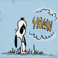 Snoopy Yawn