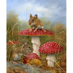 carl whitfield - mouse on toadstool - fine art print