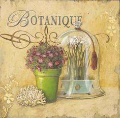 Botanique – Angela Staehling