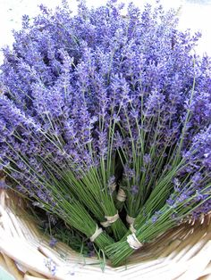 fresh lavender bouquet to decorate your home with