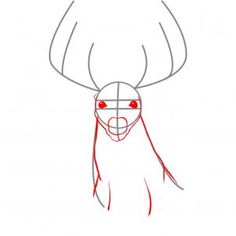 how to draw a realistic deer step 2