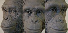 Monkey sculpt detail