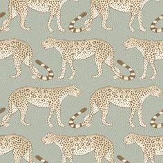 Leopard Walk 109/2009 - Ardmore - Cole & Son