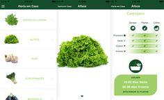 Aplicativo gratuito dá dicas sobre o cultivo de horta em casa