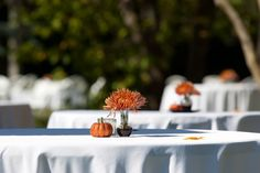 our centerpieces were simple. A small candle, a glitter pumpkin, and a vase with a single orange spider? mum