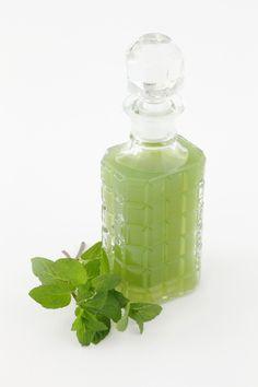 Dal sapore deciso, il liquore alla menta è un digestivo molto comune sulle tavole italiane: ecco come prepararlo facilmente in casa.