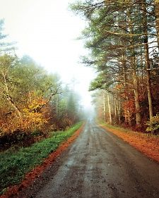 Maine road in the fall.  ms-jbunker-270-md108176.jpg
