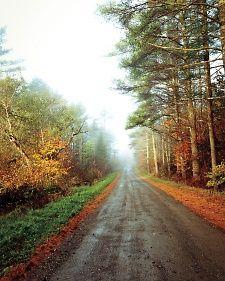 Maine road in the fall.  ms-jbunker-270-md108176.jpg