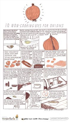 10 Non-Cooking Uses for Onions « The Secret Yumiverse