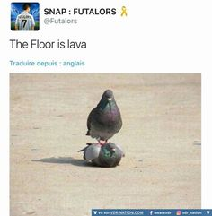The floor is lava !