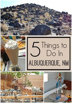 Albuquerque, in the heart of beautiful New Mexico, has loads  [Continue Reading]