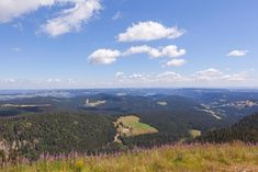Bergwandern im Schwarzwald | Bergtouren im Überblick Hiking Trails, Places To Go, Germany, Wanderlust, Tours, Mountains, Outdoor, Southern, Traveling