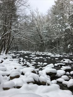 Winter on the Sugarland trial in the Smoky Mountain National Park.