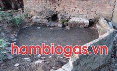 Ô nhiễm môi trường chăn nuôi khi chưa làm biogas