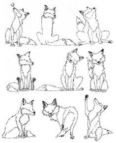 fox drawing...reminds me of line drawing with words (to tell a story)