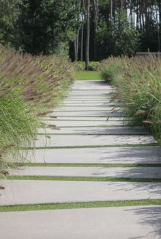 Fountain Grass bottlebrush plumes enhance this interesting and inviting walkway. Eurodal (Paved Garden Step)