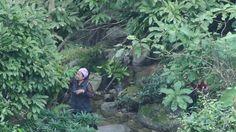 Trèo đèo lội suối lên đỉnh Tây Côn Lĩnh để tìm kiếm thuốc