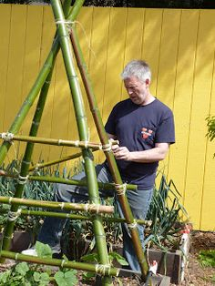 Bamboo trellis for vertical garden - Alles über den Garten Bamboo Trellis, Bamboo Garden, Garden Trellis, Shade Garden, Vertical Planting, Vertical Vegetable Gardens, Veggie Gardens, Building A Trellis, Building A Fence