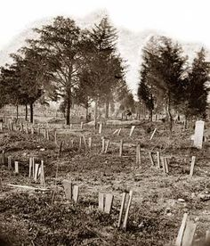 Graves of Confederate soldiers in Hollywood Cemetery, with board markers.