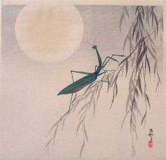 View and purchase art by Ohara Koson and other Japanese artists. Japanese etchings, wood block, silkscreen, stencil from famous artists. Japanese Artwork, Japanese Painting, Japanese Prints, Illustrations, Illustration Art, Ohara Koson, Hokusai, Praying Mantis, Chinese Art