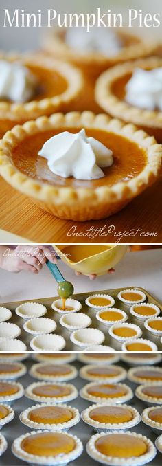 These mini pumpkin pies are so EASY and they taste amazing! So awesome for when you've eaten a huge dinner and can't eat a full plate of dessert! desserts desserts for baby shower desserts for weddings Mini Pumpkin Pies, Pumpkin Pie Recipes, Fall Recipes, Holiday Recipes, Mini Pies, Pumpkin Pie Shell Recipe, Christmas Recipes, Mini Cheesecakes, Mini Pie Recipes