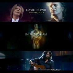 In Memoriam of David :( <3☆☆☆☆☆☆