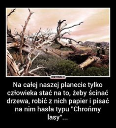 bezuzyteczna.pl to serwis gromadzący wiedzę bezużyteczną, ciekawostki, absurdy, rekordy, imponujące fakty, niebywałe oraz nietypowe historie. Na bezuzyteczna.pl znajdziesz codzienna dawkę niepotrzebnej, ale jakże interesującej wiedzy, której nie zdobędziesz w szkole. Best Memes, Sarcasm, Animals And Pets, Funny Pictures, Sad, Humor, Quotes, Life, Humour