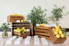 Did someone say lush greens and beautiful dreams? If so, this Tuscan Inspired Lemon Baby Shower at Kara's Party Ideas has to be seen! Baby Shower Flowers, Baby Shower Favors, Shower Party, Baby Shower Parties, Baby Shower Themes, Shower Ideas, Baby Favors, 2nd Baby Showers, Baby Boy Shower