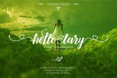 Hello Lary + Ornament and Swashes by Yipia Nesia on @creativemarket