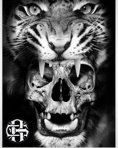 Tattoo stencil Tiger skull - Tattoo stencil Tiger skull Informations About Tattoo stencil Tiger skull Pin You can easily use my - Feminine Skull Tattoos, Pirate Skull Tattoos, Animal Skull Tattoos, Indian Skull Tattoos, Small Skull Tattoo, Evil Skull Tattoo, Skull Tattoo Flowers, Skull Girl Tattoo, Girl Skull