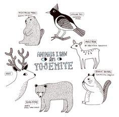 KAte sutton illustrations