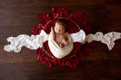home - Stephanie Renee Photography Newborn Baby Photos, Newborn Pictures, Baby Girl Newborn, Baby Pictures, Newborn Session, Pregnancy Photos, Baby Baby, Newborn Baby Photography, Newborn Photographer