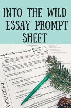 Into The Wild Krakauer Expository Essay Prompt Sheet And  Into The Wild Krakauer Expository Essay Prompt Sheet And Brainstorming  Sheet