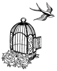 Google Image Result for http://www.howlgallery.com/images/stories/portfolios/andy/sketches/birdcage-bird.jpg