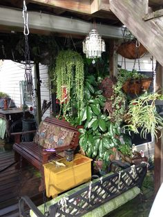 Outdoor living in southeast La. On our back deck, by the bayou